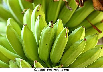 boompje, banaan