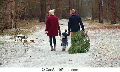 boompje, gezin, dragen, park