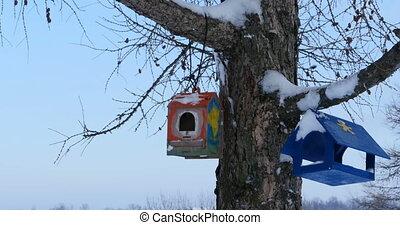 boompje, observeer vogels voeders