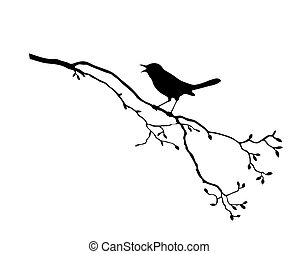 boompje, vector, silhouette, vogel, tak