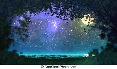 bos, lus, nacht