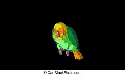 boven., papegaai, kielwater, classieke, met de hand gemaakt, channel., animatie, groene, alfa