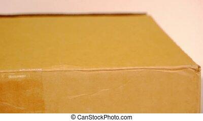box., binnen, hand, verticaal, karton, open
