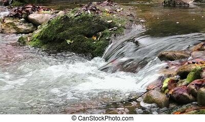 cascade, herfst, kreek, fris