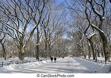 centraal, mall, park, winter