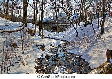 centraal park, winter, 94