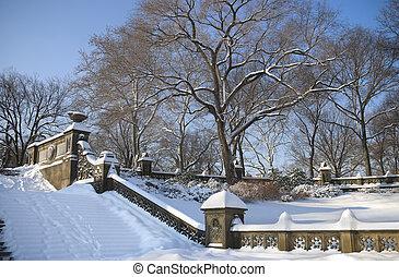centraal park, winter, stappen