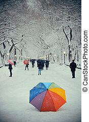 centraal park, winter