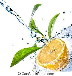 citroen loof, vrijstaand, water, groen wit, druppels