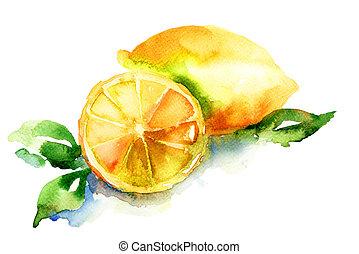 citroen, watercolor, illustratie
