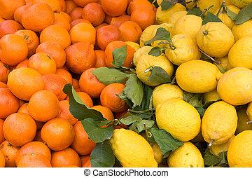 citrus, siciliaan