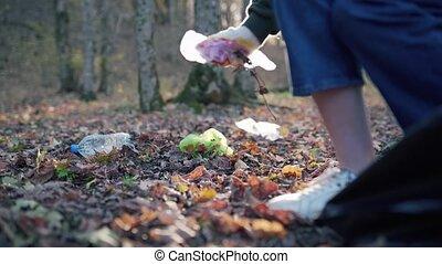 close-up., afval, restafval, bos, vervuiling, collects, gevallen, vrouw, bladeren, plastic, vieze , ecosysteem