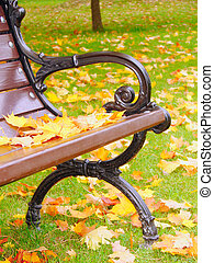 closeup, bankje, park, herfst