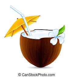 cocosnoot, vector, cocktail