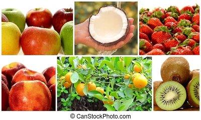 coll, fruit, gevarieerd, bomen, vruchten