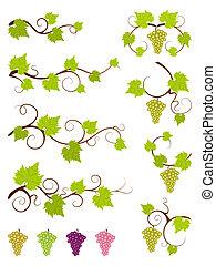 communie, druif, set., wijngaarden, ontwerp