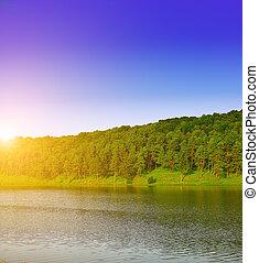 composition., lente, rivier, forest., natuur