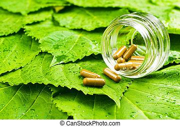 concept, gezonde , op, pot, leaves., vitamine, groene, pillen