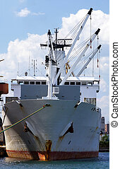 de container van het schip