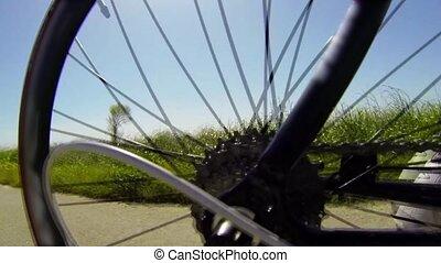 de mening van het detail, bycicle, tandwiel, syste