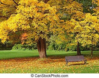 de stad van het park, herfst