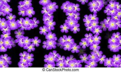 def, wild, animatie, bloem, purpere achtergrond
