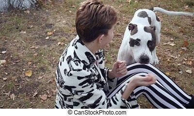 dog., vrouw, haar, zittende , omhelzen, grond, stafford