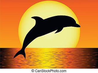 dolfijn, silhouette