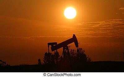 dommekracht, de pomp van de olie