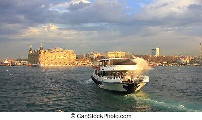 door, cruise, istanboel, vogels