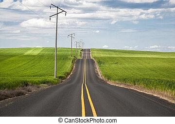 door, tarwe, snelweg, velden
