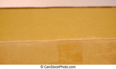 doosje, box., binnen, hand, verticaal, karton, open