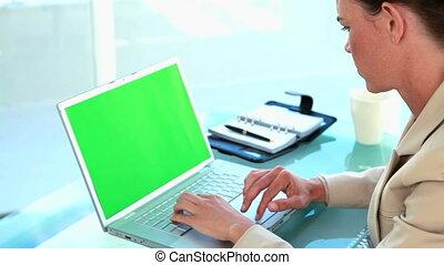 draagbare computer, het typen, businesswoman