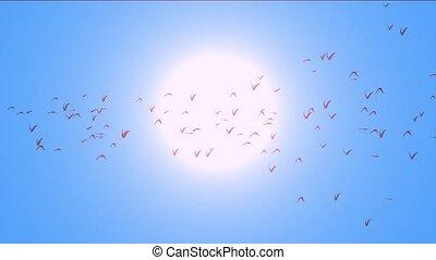 duiven, tegen, vlieg, zon, op, migrerend, vlucht, vogels, birds.
