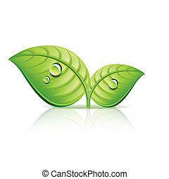 ecologie, bladeren, illustratie, vector, groene, pictogram