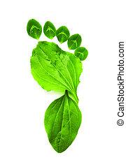 ecologie, kunst, symbool, voet, groene, afdrukken