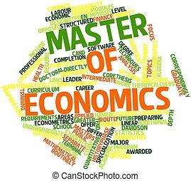 economie, meester