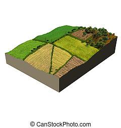 ecosysteem, model, bouwland, 3d