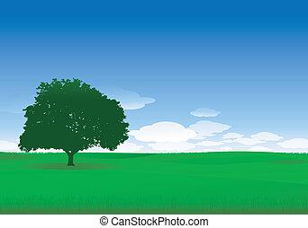 eenzaam, boompje