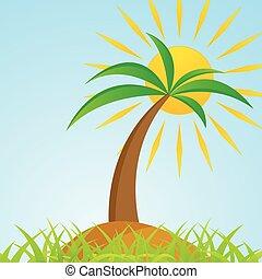 eiland, boompje, tropische , palm, zon, glanzend