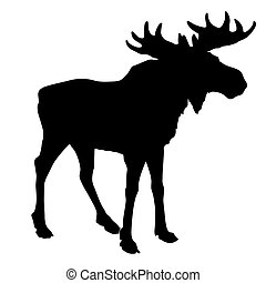 eland, silhouette, witte achtergrond