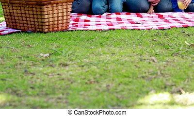 eten, familie picknick
