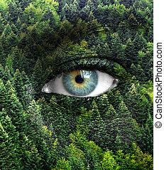 eyes, concept, natuur, -, groen bos, menselijk, sparen