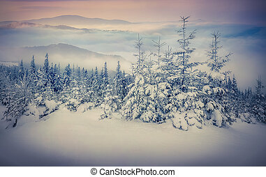 fairy-verhalen, bergen., winter, sneeuwval