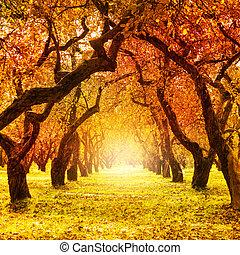 fall., autumn., park, herfstachtig