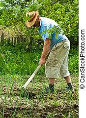 farmer, graven, ui, bebouwd