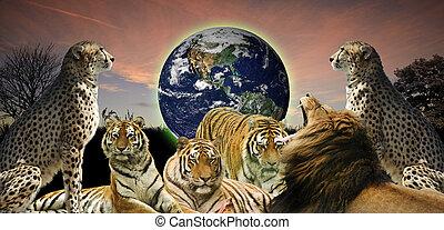 fauna, concept, mensen, beeld, goed, informatietechnologie, creatief, planeet, belongs, hen, dier, beschermen, aarde