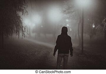 film, stijl, fog., herfst, noir, verschrikking, scène, verlichting