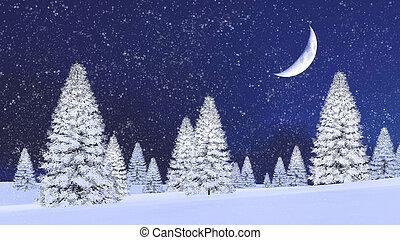 firs, nacht, sneeuwval, besneeuwd, half maan