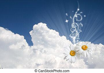 floral, hemel, achtergrond